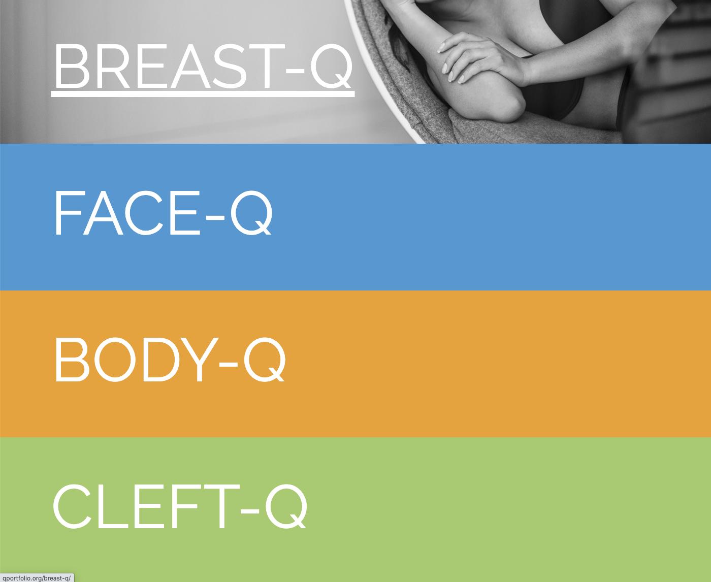 Screenshot of Q Portfolio